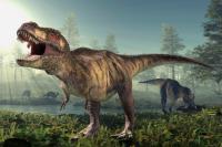 اكتشاف هام لدى ديناصور عمره 125 مليون عام