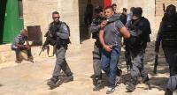 الاحتلال يعتقل حارس الأقصى رجائي الترهي