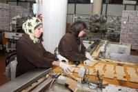 منتدى الاستراتيجيات: عمالة الإناث تساهم بنمو الناتج المحلي