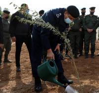 بمناسبة المئوية الأمن يطلق مبادرته لغرس 100 ألف شجرة