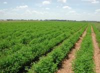 كم مساحة الأراضي الصالحة للزراعة بالأردن؟